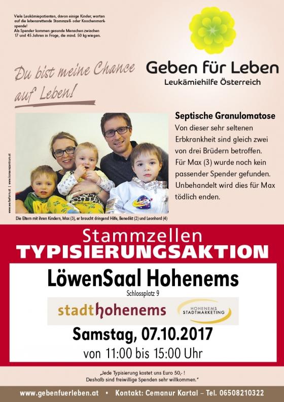 Hohenems für Max (3)