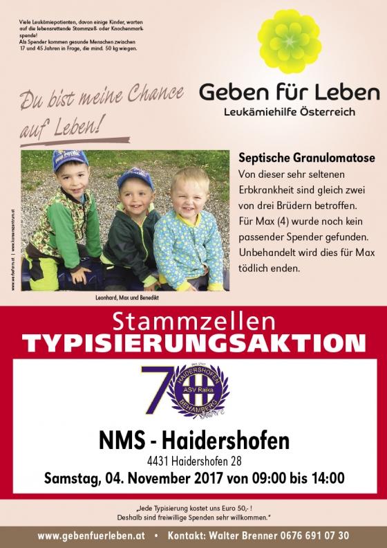 Haidershofen für Max (4)