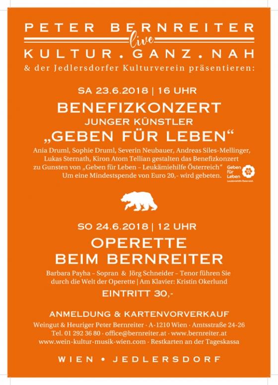 Benefizkonzert Junger Künstler Wien