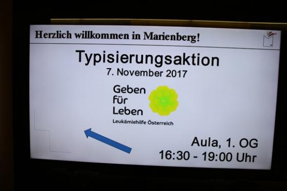 Typisierung als Maturaprojekt Marienberg