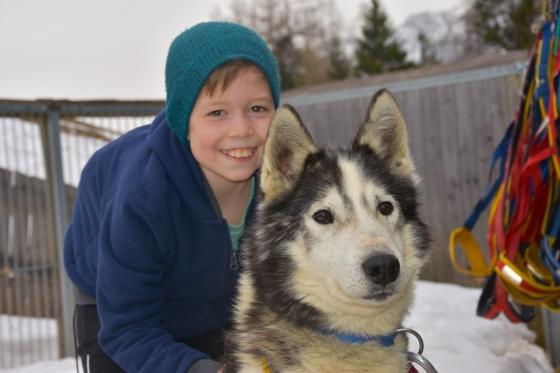 Huskys bereiten Kindern einen unvergesslichen Nachmittag