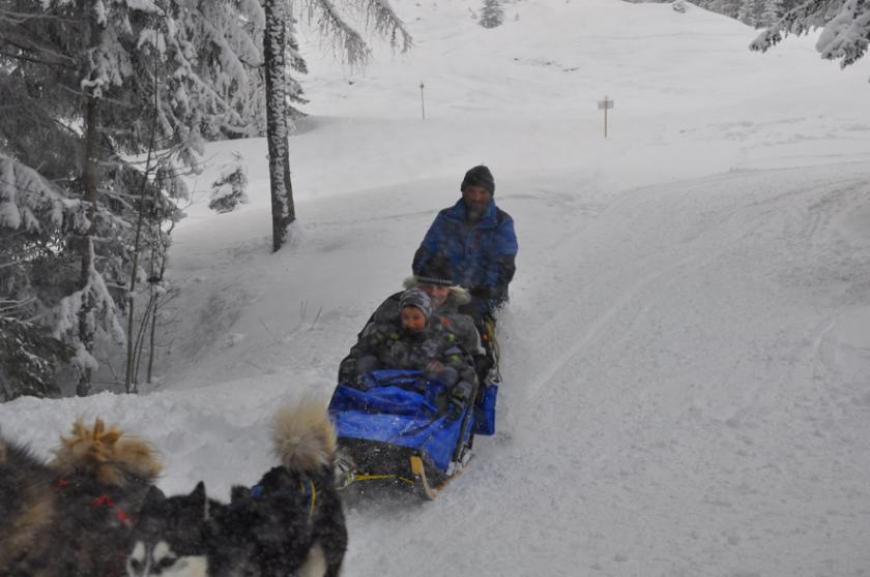 'Husky-Schlittenfahrt mit leukämiekranken Kindern!'-Bild-20