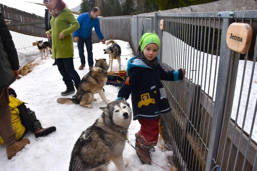 'Kindertraum mit Husky-Toni auf der Tschengla für schwerkranke Kinder'-Bild-12