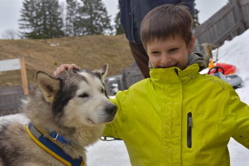 'Kindertraum mit Husky-Toni auf der Tschengla für schwerkranke Kinder'-Bild-14