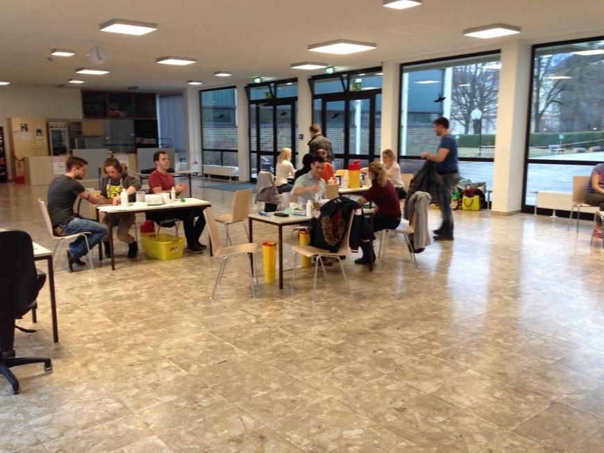 'Großartige Aktion in Leoben bringt 574 Neutypisierungen'-Bild-8