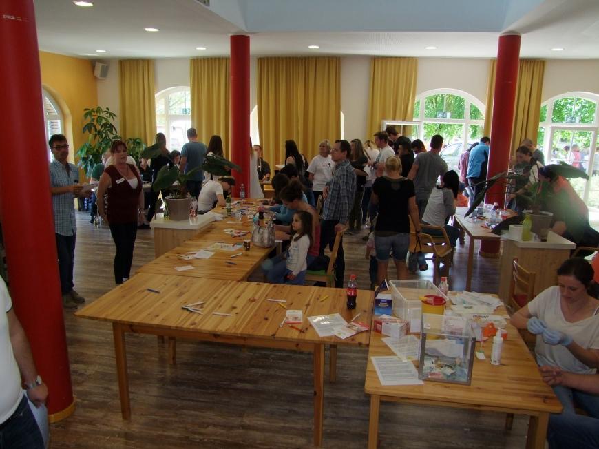 'Fantastische Aktion mit Promi-Beteiligung in Wels setzt die Latte für unsere Aktionen wieder hoch'-Bild-12