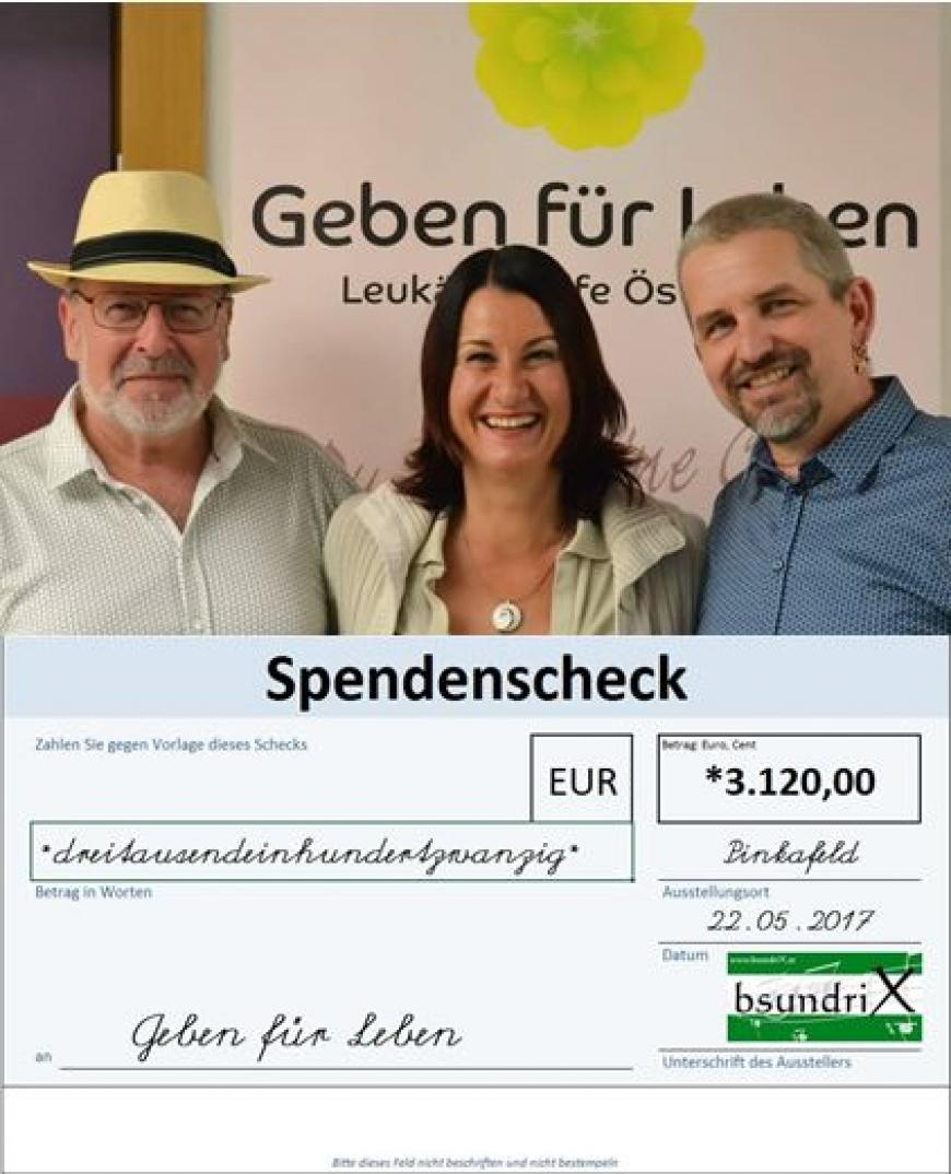 'Großartige Konzerte in Bludenz und Pinkafeld bringen tolles Spendenergebnis'-Bild-16