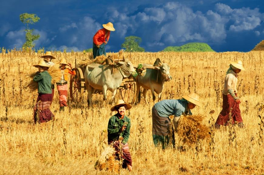 'Mehrfacher Foto-Landesmeister zeigt fantastische Reise durch Burma'-Bild-4