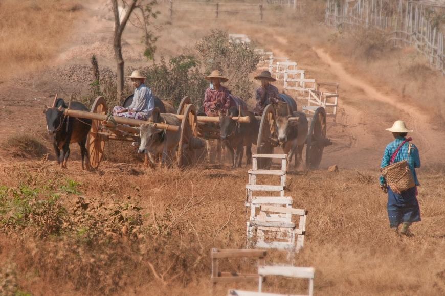 'Mehrfacher Foto-Landesmeister zeigt fantastische Reise durch Burma'-Bild-6