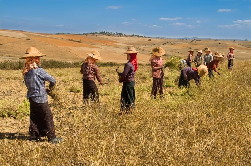 'Mehrfacher Foto-Landesmeister zeigt fantastische Reise durch Burma'-Bild-8
