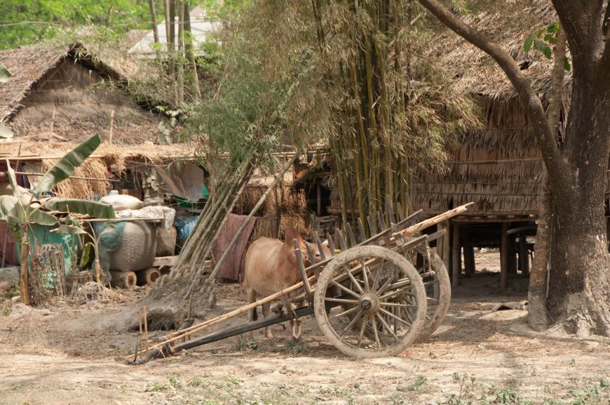 'Mehrfacher Foto-Landesmeister zeigt fantastische Reise durch Burma'-Bild-13
