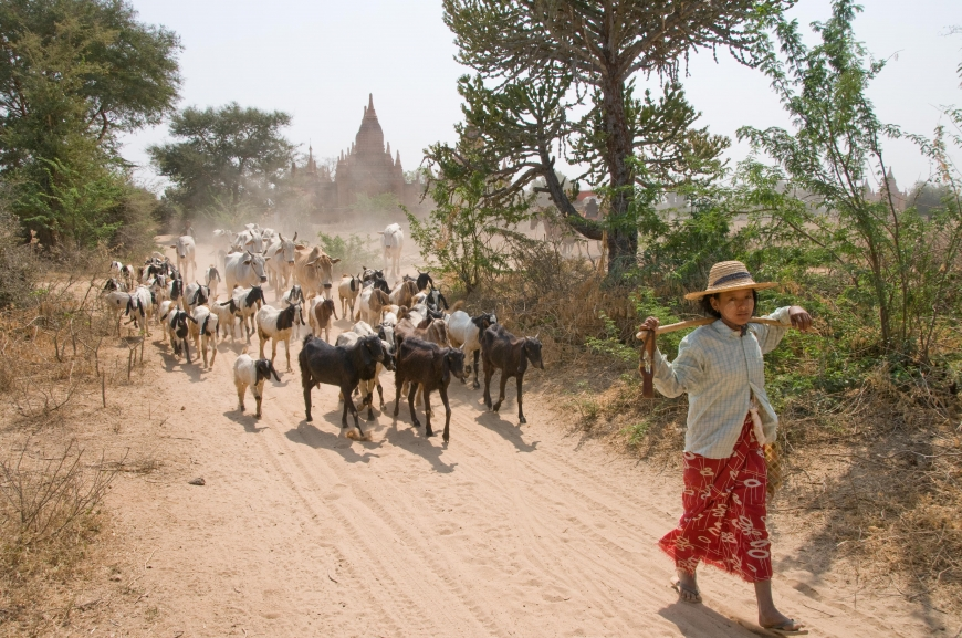 'Mehrfacher Foto-Landesmeister zeigt fantastische Reise durch Burma'-Bild-18