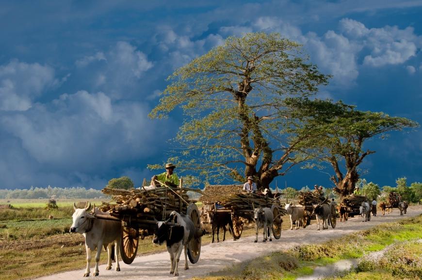 'Mehrfacher Foto-Landesmeister zeigt fantastische Reise durch Burma'-Bild-24