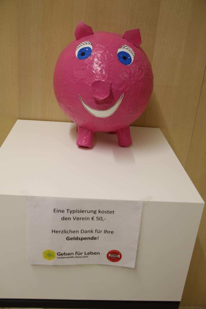 '99 Neutypisierungen und € 362,- an Spenden bei Maturaprojekt Marienberg'-Bild-19