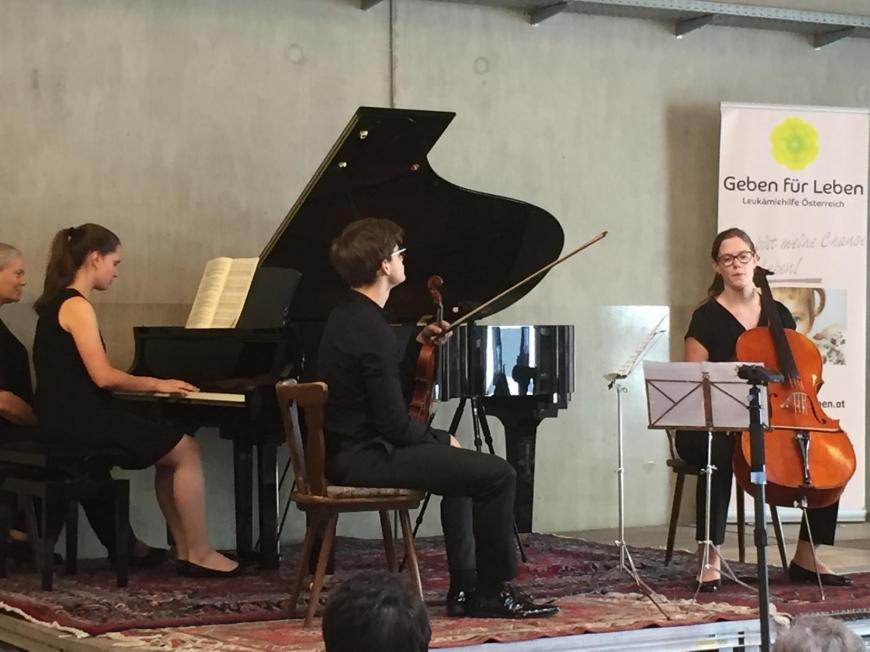 'Tolle Aufführung junger klassischer Musiker für den guten Zweck'-Bild-10