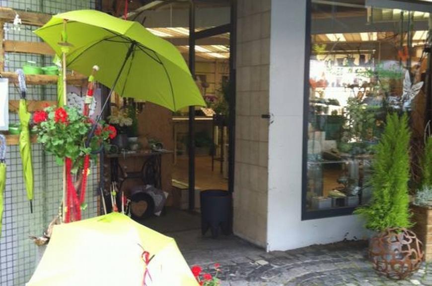 'Kauf von Regenschirmen und Prämierung der lustigsten Schirmfotos!'-Bild-10