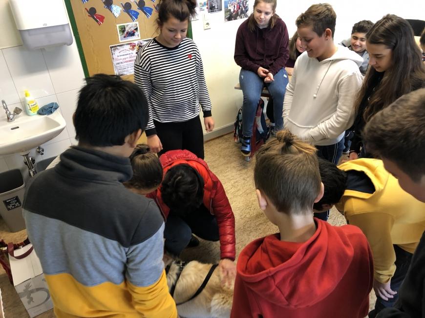 '2a-Klasse der MS Kirchdorf Lustenau zeigt fantastisches Engagement'-Bild-3