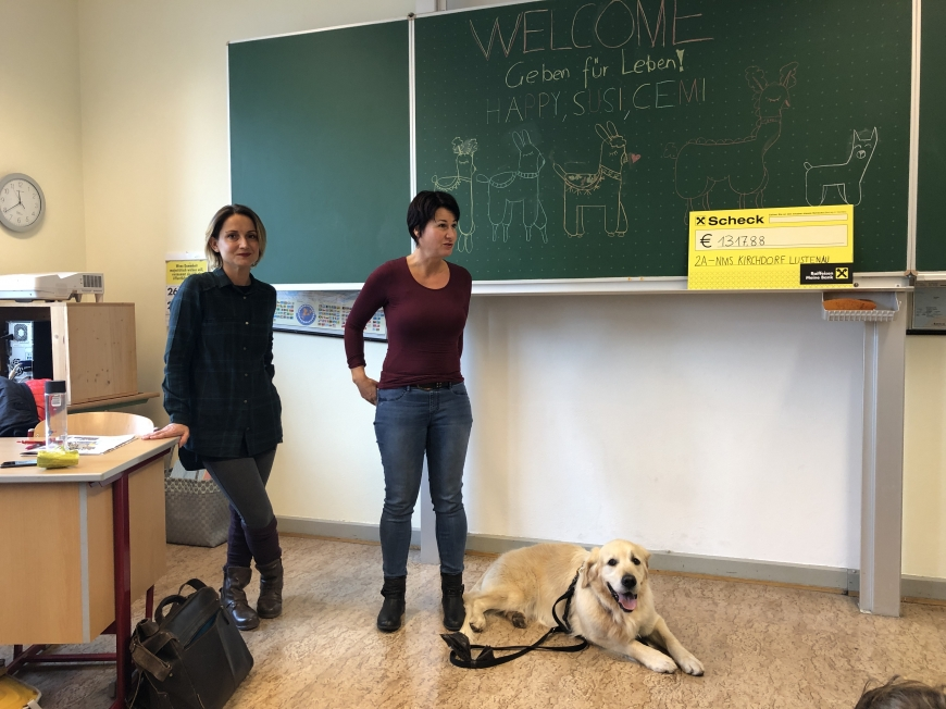 '2a-Klasse der MS Kirchdorf Lustenau zeigt fantastisches Engagement'-Bild-8