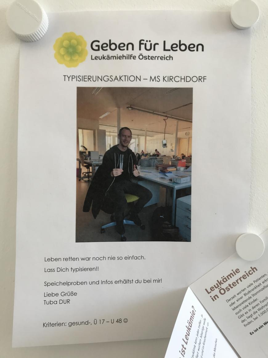 '2a-Klasse der MS Kirchdorf Lustenau zeigt fantastisches Engagement'-Bild-13