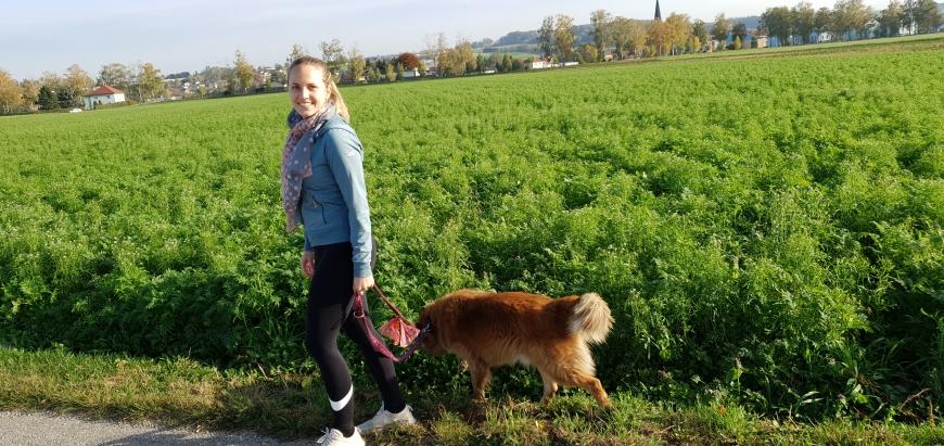 'Junge Niederösterreicherin spendet ihr Knochenmark an Jungen aus Nordeuropa'-Bild-1