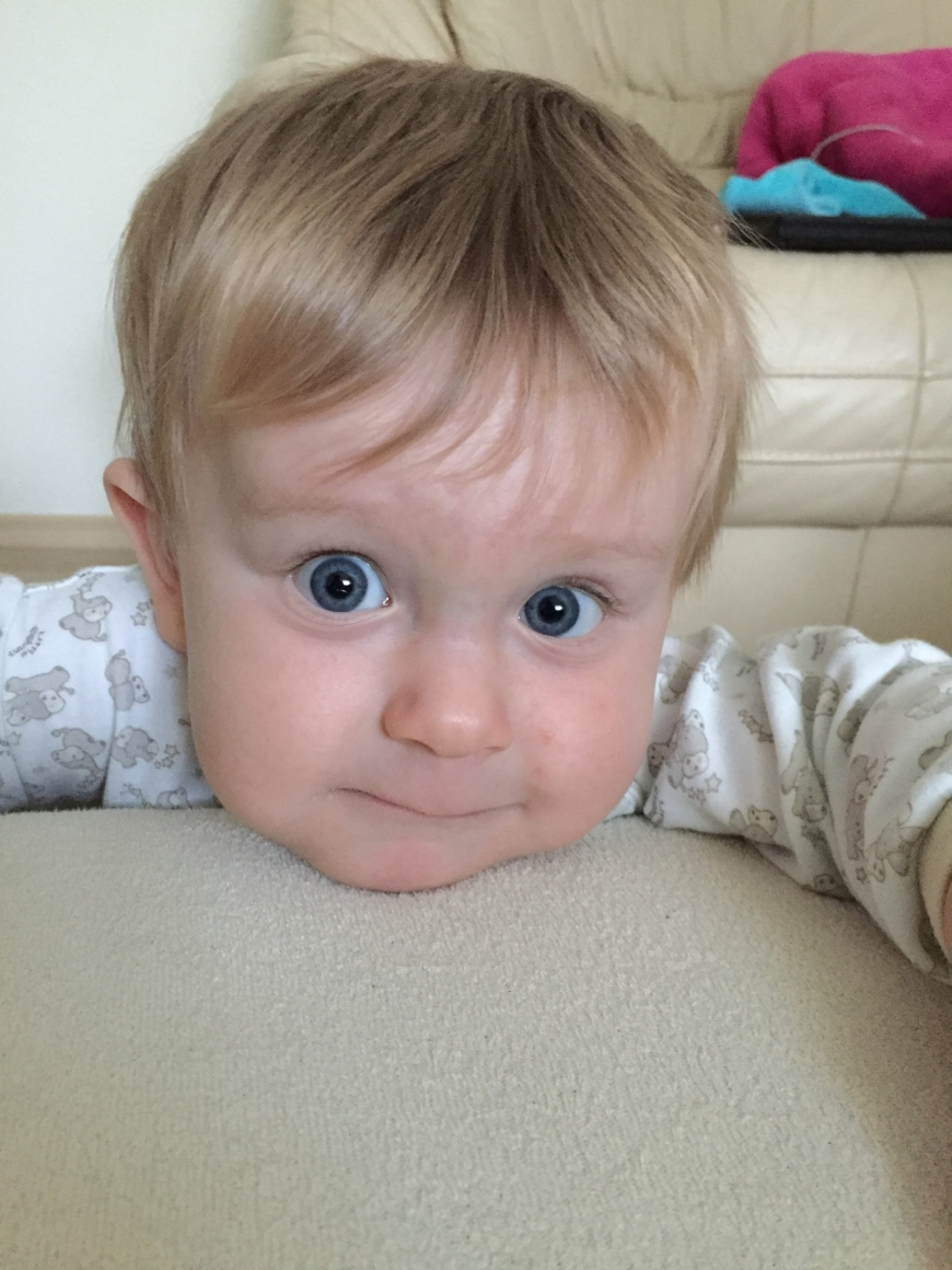 'Der dreijährige Leonhard hat Leukämie und braucht gesunde Stammzellen!'-Bild-1